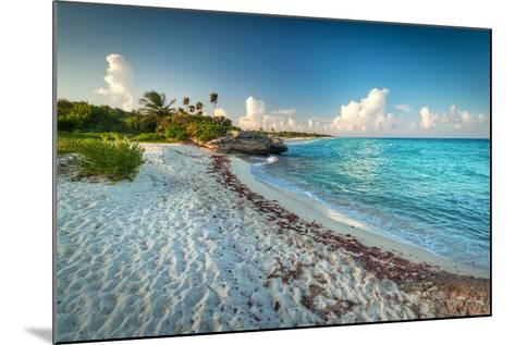 Idyllic Beach of Caribbean Sea in Playacar - Mexico-Patryk Kosmider-Mounted Photographic Print