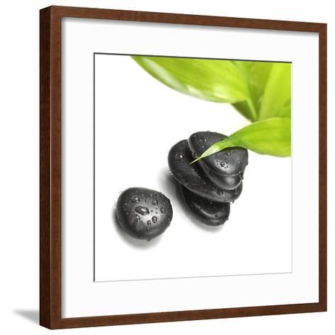 Black Stones and Green Leaf-Rudchenko Liliia-Framed Art Print