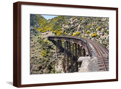 Railway Bridge on Taieri Gorge New Zealand-BackyardProductions-Framed Art Print