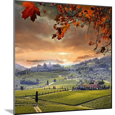 Chianti Vineyard Landscape in Tuscany, Italy-extravagantni-Mounted Photographic Print