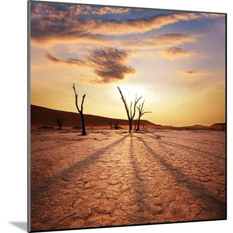 Dead Valley in Namibia-Andrushko Galyna-Mounted Photographic Print