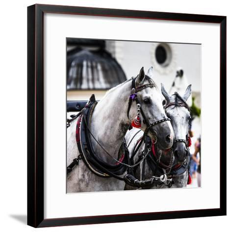 Horses and Carts on the Market in Krakow, Poland.-Curioso Travel Photography-Framed Art Print