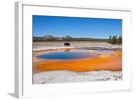 Yellowstone-Anton Foltin-Framed Art Print