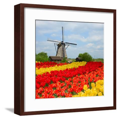 Dutch Windmill over Tulips Field-neirfy-Framed Art Print