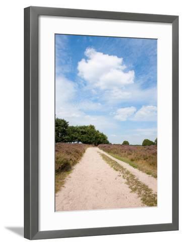 Landscape with Sand Path Purple Heath Fields in Summer-Ivonnewierink-Framed Art Print