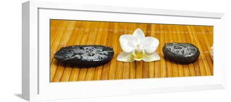 Japanese Zen Garden-filmfoto-Framed Art Print