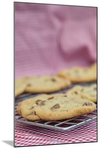 Beautiful Fresh Hand Made Chocolate Chip Cookies-Veneratio-Mounted Photographic Print
