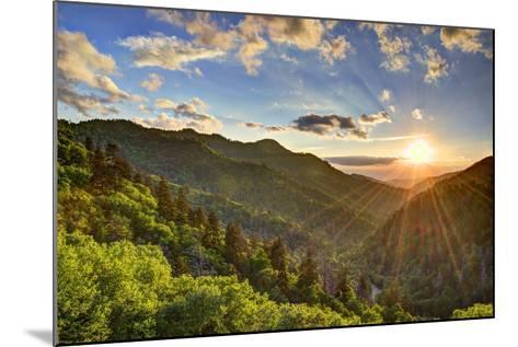 Newfound Gap in the Smoky Mountains near Gatlinburg, Tennessee.-SeanPavonePhoto-Mounted Photographic Print