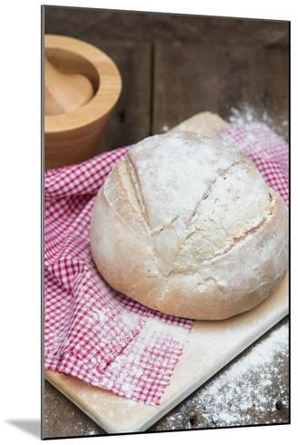 Freshly Baked French Pain De Campagne Loaf of Bread-Veneratio-Mounted Photographic Print