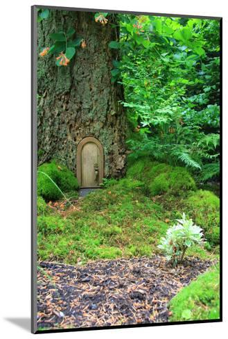 Little Fairy Tale Door in a Tree Trunk.-Hannamariah-Mounted Photographic Print