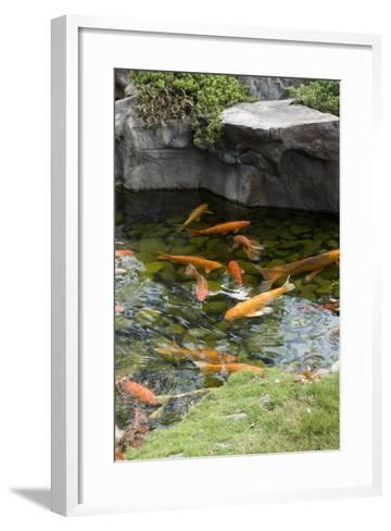 Koi Pond-dosecreative-Framed Art Print