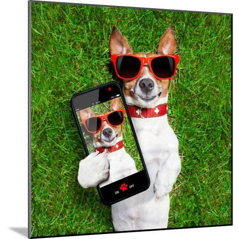 Funny Selfie Dog-Javier Brosch-Mounted Photographic Print