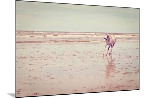 Horse-gkuna-Mounted Photographic Print