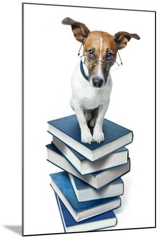 Dog Book Stack-Javier Brosch-Mounted Photographic Print