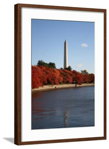 Tidal Pool in Autumn-fintastique-Framed Art Print