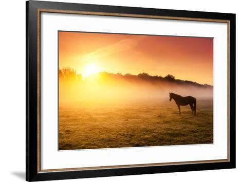 Arabian Horses Grazing on Pasture at Sundown in Orange Sunny Beams. Dramatic Foggy Scene. Carpathia-Leonid Tit-Framed Art Print