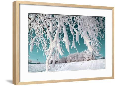 Tree in Snow on Celestial Background-basel101658-Framed Art Print