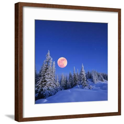 Winter Landscape in the Mountains at Night. A Full Moon and a Starry Sky. Carpathians, Ukraine-Kotenko-Framed Art Print