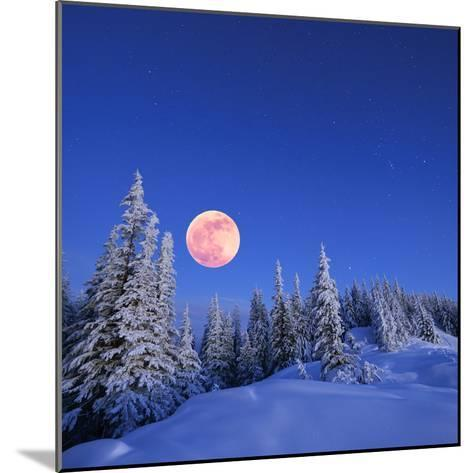 Winter Landscape in the Mountains at Night. A Full Moon and a Starry Sky. Carpathians, Ukraine-Kotenko-Mounted Photographic Print