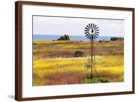 California's Central Coast, Big Sur, USA-coleong-Framed Art Print
