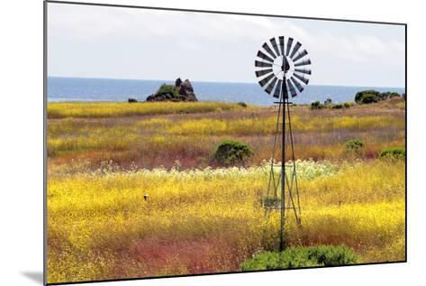 California's Central Coast, Big Sur, USA-coleong-Mounted Photographic Print