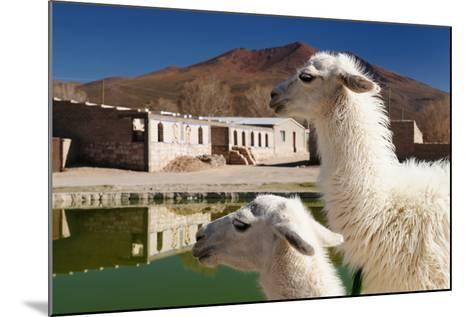 Bolivia, the Most Beautifull Andes in South America-rchphoto-Mounted Photographic Print