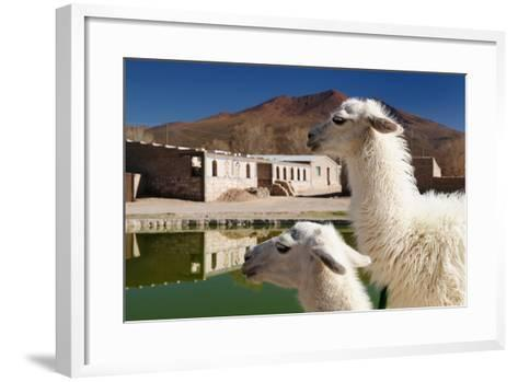 Bolivia, the Most Beautifull Andes in South America-rchphoto-Framed Art Print