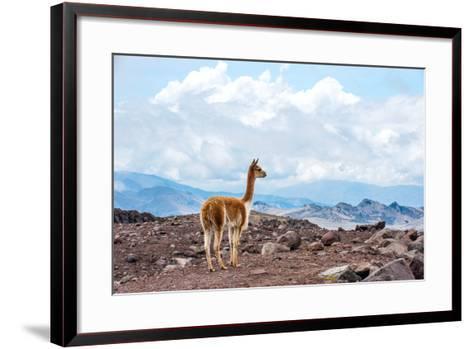 Andes of Central Ecuador-xura-Framed Art Print