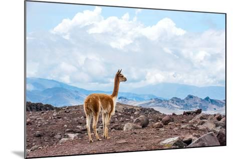 Andes of Central Ecuador-xura-Mounted Photographic Print