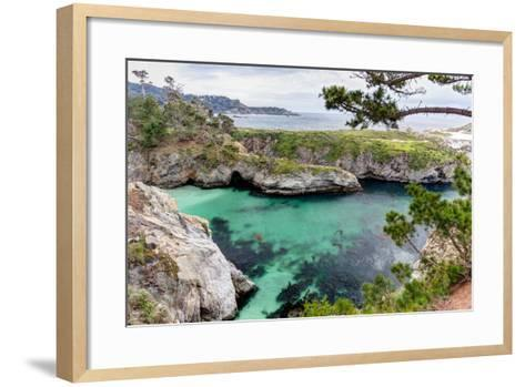 Point Lobos State Natural Reserve-Wolterk-Framed Art Print