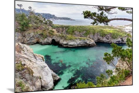 Point Lobos State Natural Reserve-Wolterk-Mounted Photographic Print