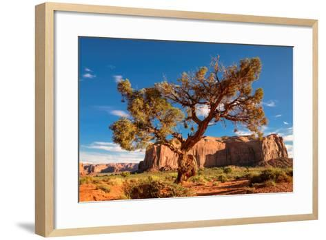 Lonely Tree Still a Life in Monument Valley, Utah-lucky-photographer-Framed Art Print