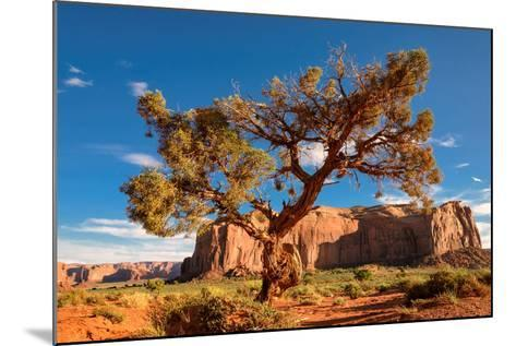 Lonely Tree Still a Life in Monument Valley, Utah-lucky-photographer-Mounted Photographic Print