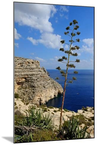 Blue Grotto Coast Malta-Diana Mower-Mounted Photographic Print