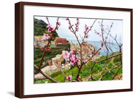 Spring Blooming Cherry Tree with Background Scenic View of Colorful Houses of Manarola Village, Cin-BlueOrange Studio-Framed Art Print