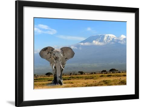 Elephant-byrdyak-Framed Art Print