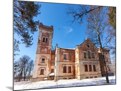 Old Brick Building on A Winter Day in Borovichi, Russia-blinow61-Mounted Photographic Print