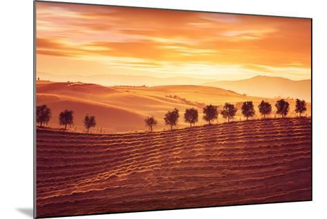 Beautiful Countryside Landscape, Amazing Orange Sunset over Golden Soil Hills, Beauty of Nature, Ag-Anna Omelchenko-Mounted Photographic Print