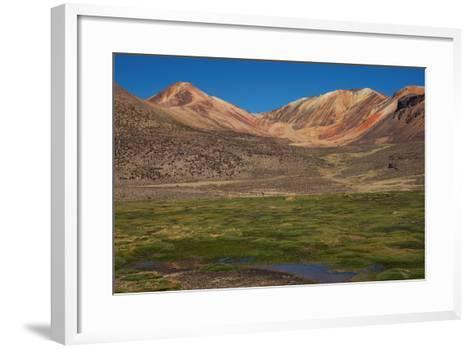 Wetland in the Atacama-JeremyRichards-Framed Art Print
