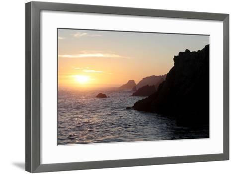 Point Lobos State Reserve Sunset-Dan Schreiber-Framed Art Print