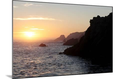 Point Lobos State Reserve Sunset-Dan Schreiber-Mounted Photographic Print
