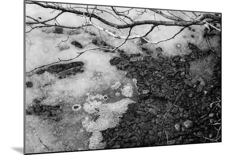 Thaw-Latitude 59 LLP-Mounted Photographic Print