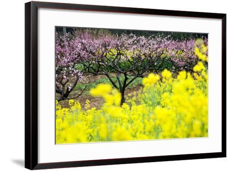 Pink Peach Flowers with Yellow Oilseed Rape Blossom.-hanhanpeggy-Framed Art Print