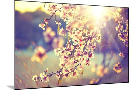 Spring Blossom Background. Beautiful Nature Scene with Blooming Tree and Sun Flare. Sunny Day. Spri-Subbotina Anna-Mounted Photographic Print