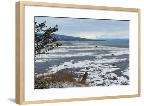 Lonely Tree Overlooking Frozen Tidal Flats-Latitude 59 LLP-Framed Art Print