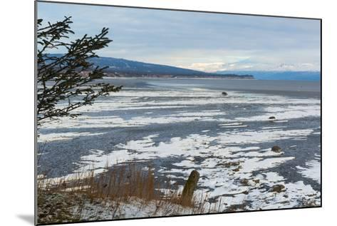 Lonely Tree Overlooking Frozen Tidal Flats-Latitude 59 LLP-Mounted Photographic Print