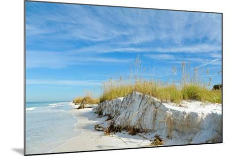 Beautiful Florida Coastline-EyeMark-Mounted Photographic Print