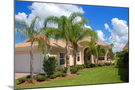 Florida Home-Yarex-Mounted Photographic Print
