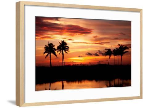 Tropical Sunset with Palm Trees-Paul Brady-Framed Art Print