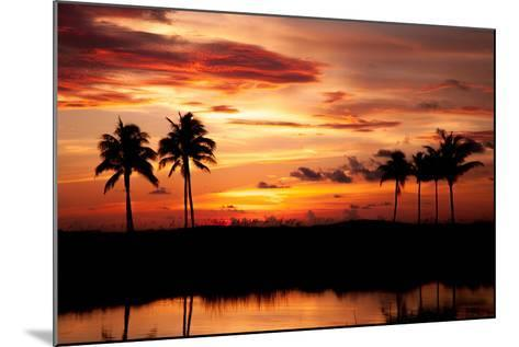 Tropical Sunset with Palm Trees-Paul Brady-Mounted Photographic Print